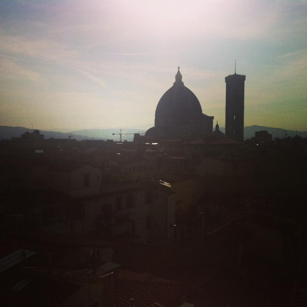 Florence from the rooftop