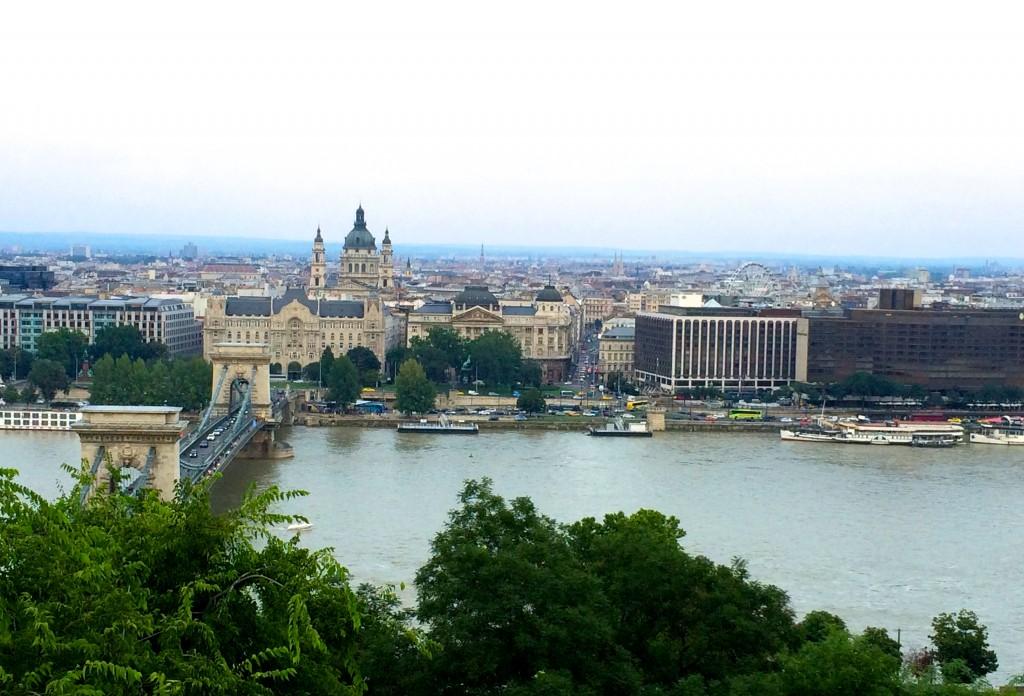 Danube from Buda