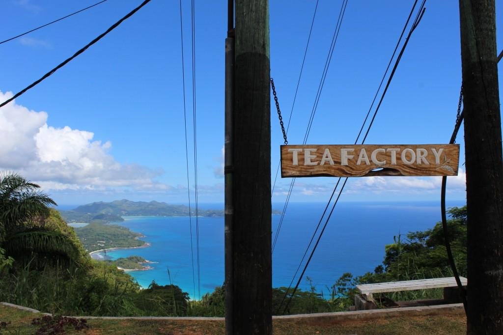 Tea Factory, Seychelles