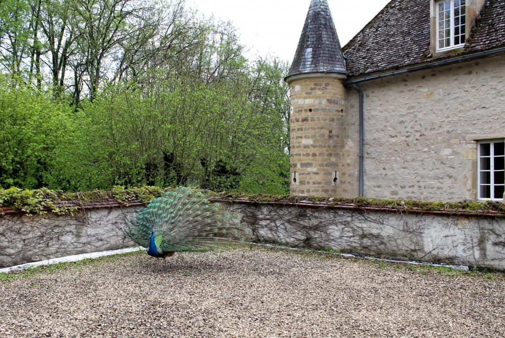 Chateau de Vault de Lugy Review