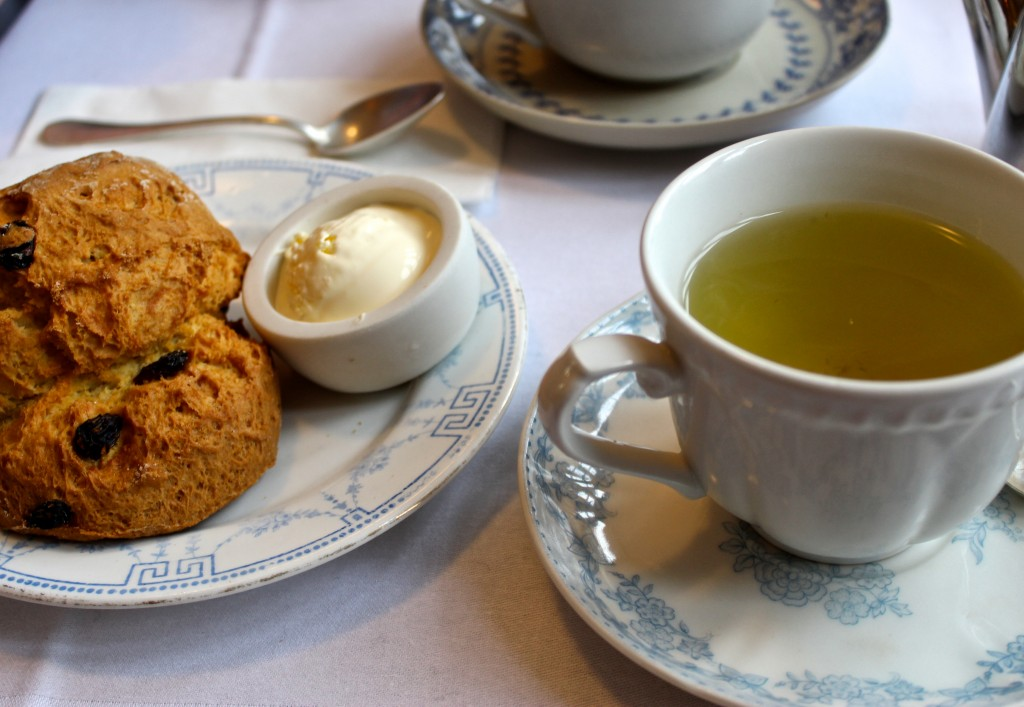 Blackbird Tea Room Brighton Review