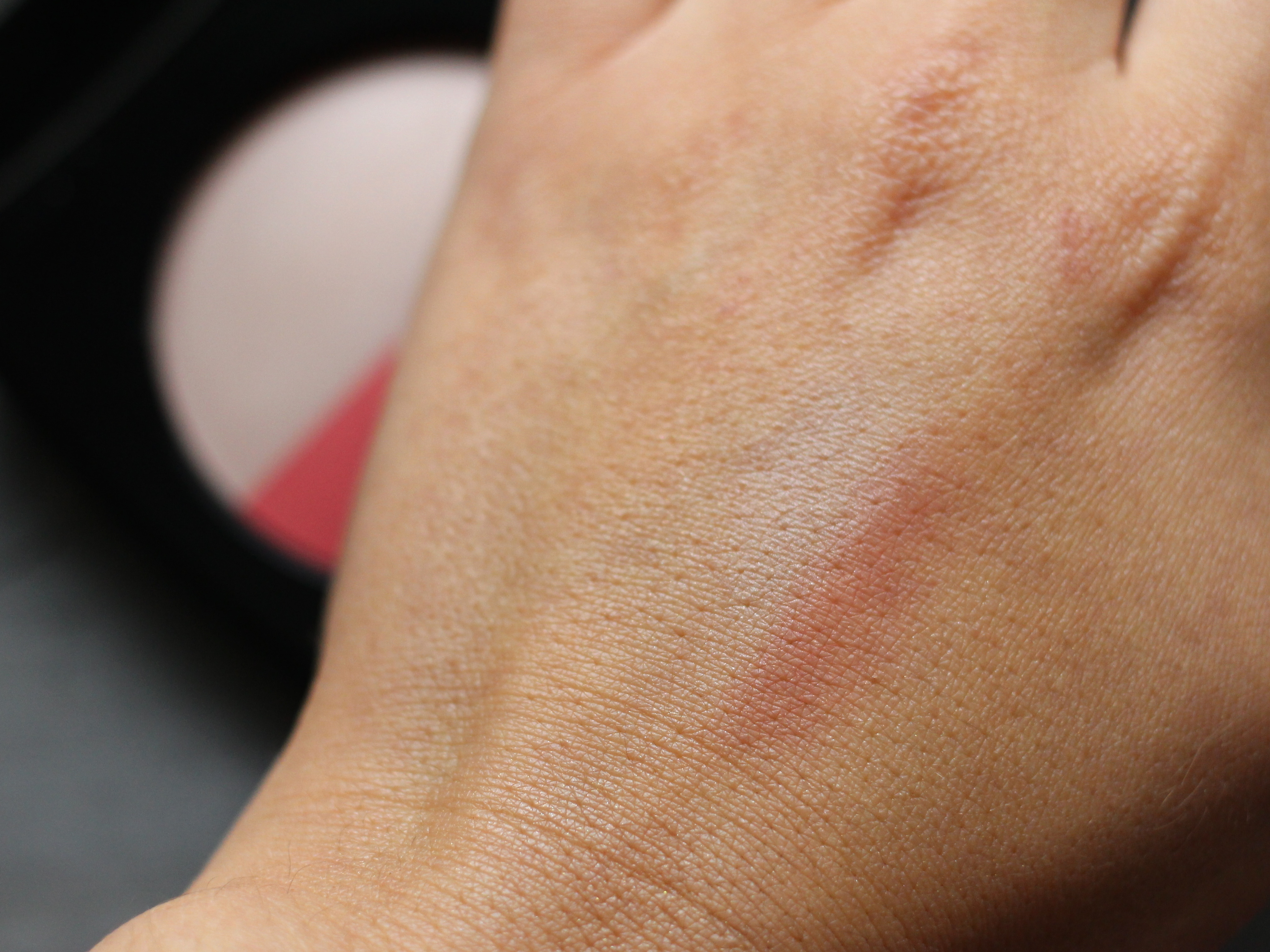 Chanel Les Beiges Healthy Glow Multi-Colour Duo No 2 swatch