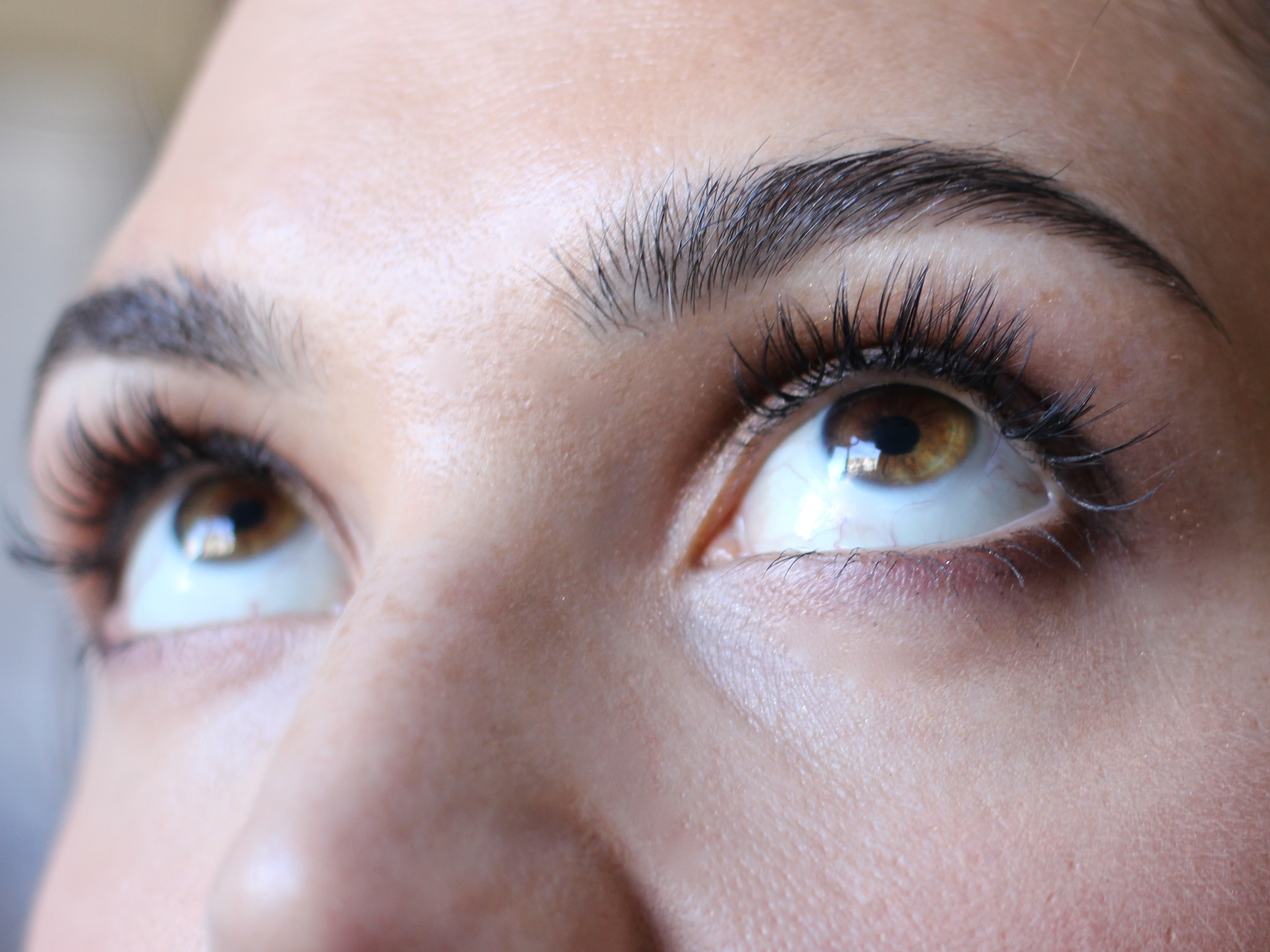 Eyelashes by Daxita Review