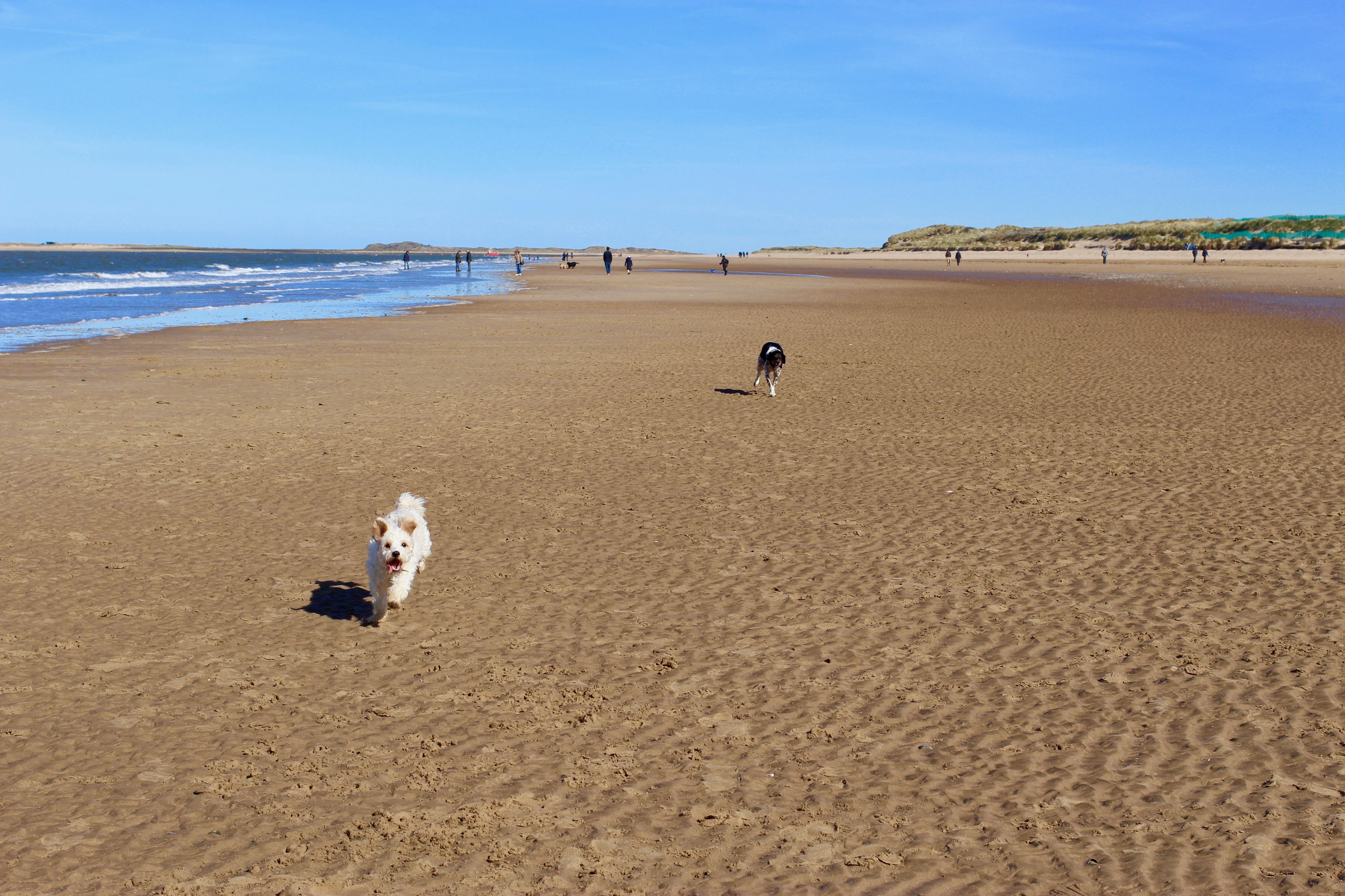 Beaches in Norfolk