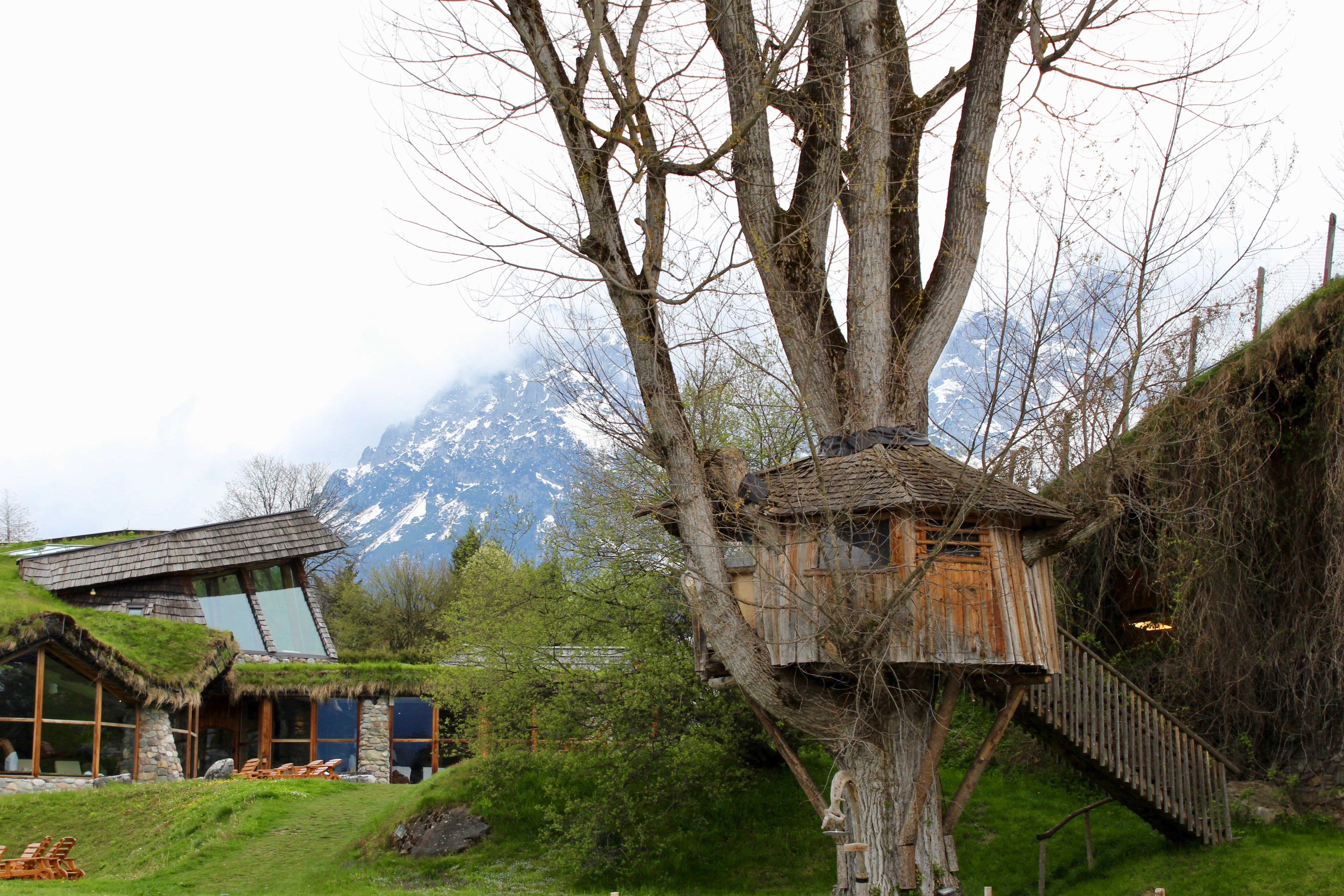 Treehouse in the stanglwirt